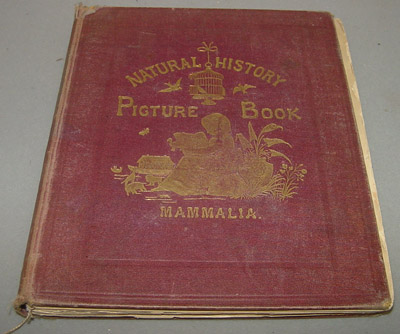 "Book - ""Natural History Picture Book – Mammalia"""