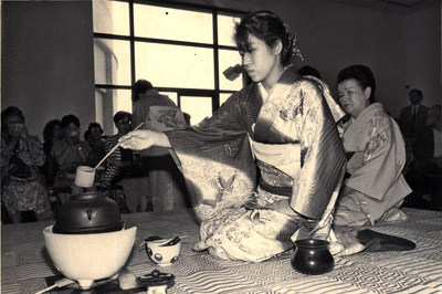Photograph-Japanese Tea at Civic Centre