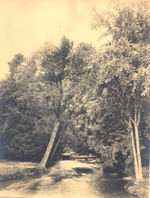 Photograph - Sheridan Creek, Clarkson