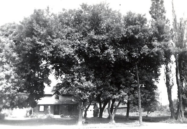 Price Homestead, Cooksville