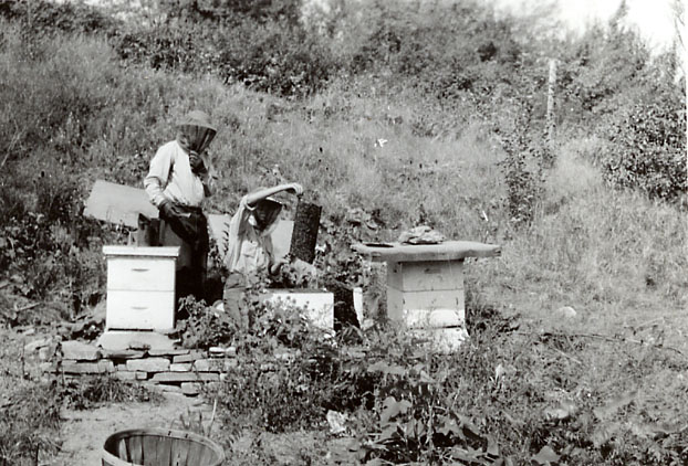 Charlie and Garth Evans Tending Bees