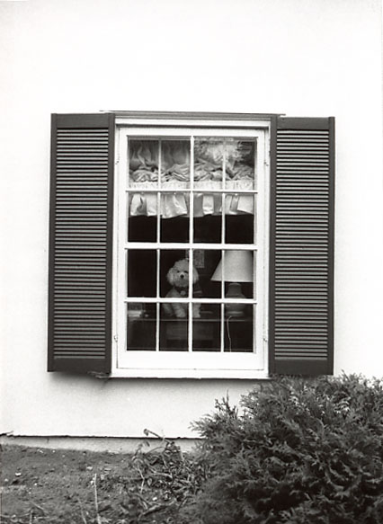 Bexhill House, Richard Barry Fudger Mansion, West Window, Clarkson