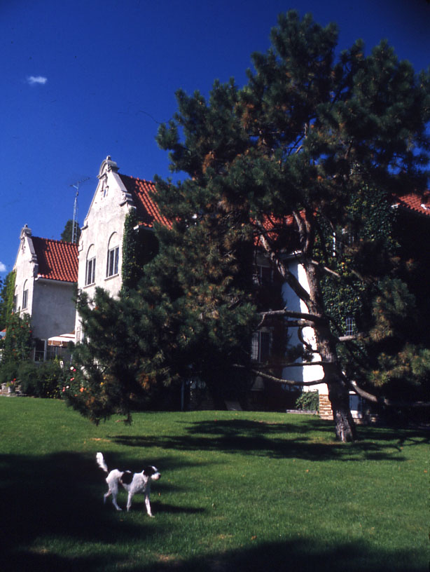 Adamson Estate, Lakeview