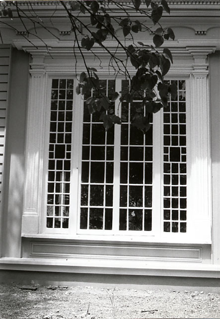 Robinson-Adamson House (The Grange), Window, Erindale