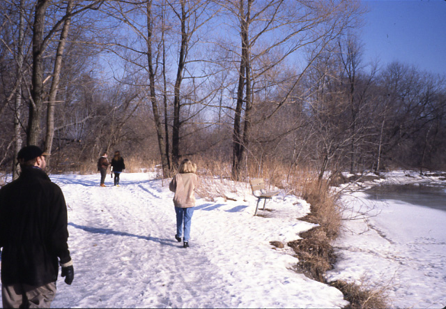 David J. Culham Trail in Winter, Erindale