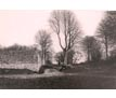 Photograph: Field of Waterloo Garden Wall of Chateau Hougomount