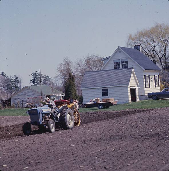 Farming on Mississauga Road, Erindale