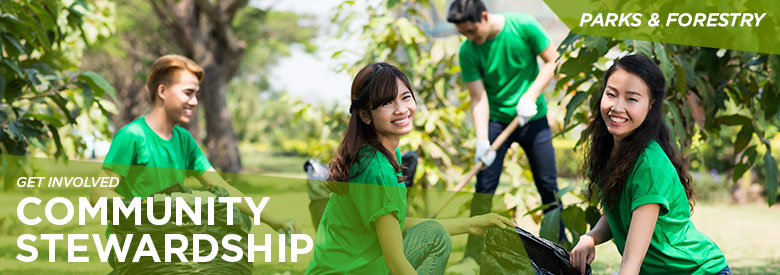 City of Mississauga Parks and Forestry - Community Stewardship