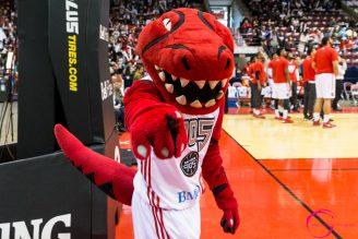 Raptors905 mascot