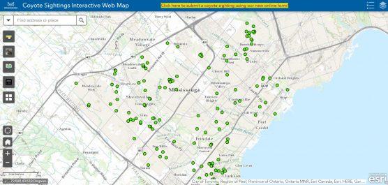 Screenshot of interactive coyote map