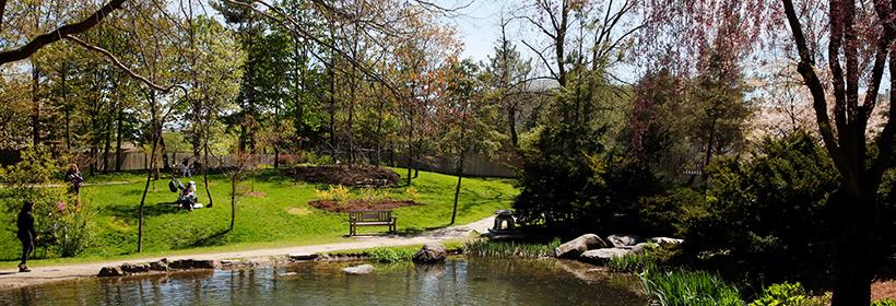 View of pond at Kariya Park