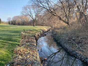 View of the creek on a sunny day with trees along the right bank and golf green on the left