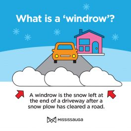 Image explaining what a windrow is