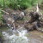 Gabion - metal mesh - with a hole torn through it by upturned tree branches, and water rushing through