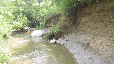 View of bank erosion from the water level on a sunny day