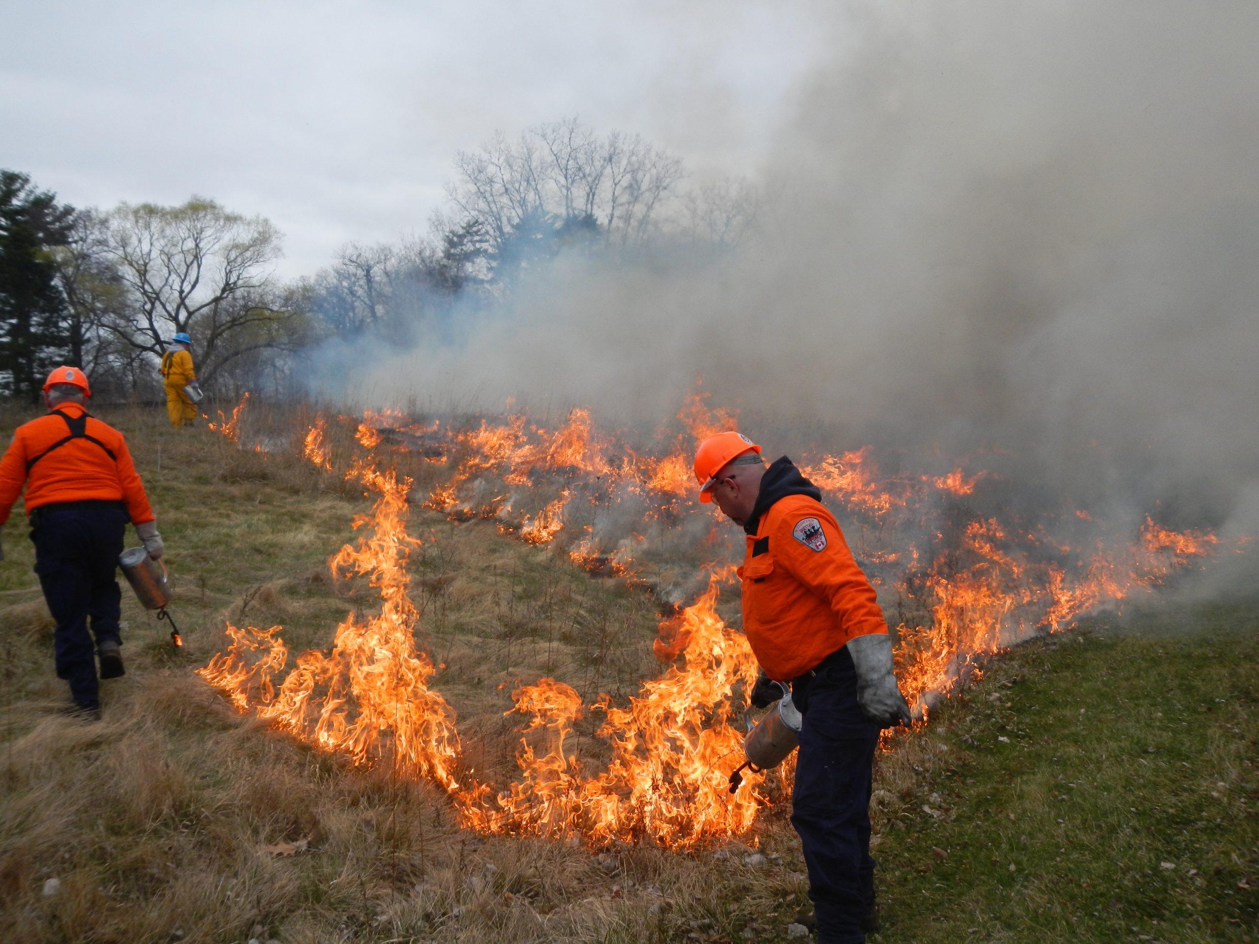 Controlled burn in prairies