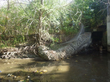 A broken chainlink fence along one side of the creek bed