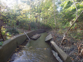 Creek with trees on either side, and broken concrete along the left bank