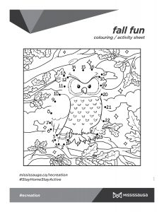 Owl Colouring and connect the dots